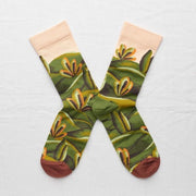 Multi-color Cypress Socks