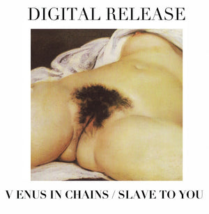 The Virgins Digital Release – Venus in Chains / Slave to You Single