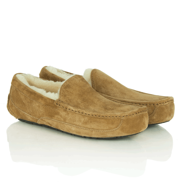 UGG Men's Ascot Slipper | Chestnut