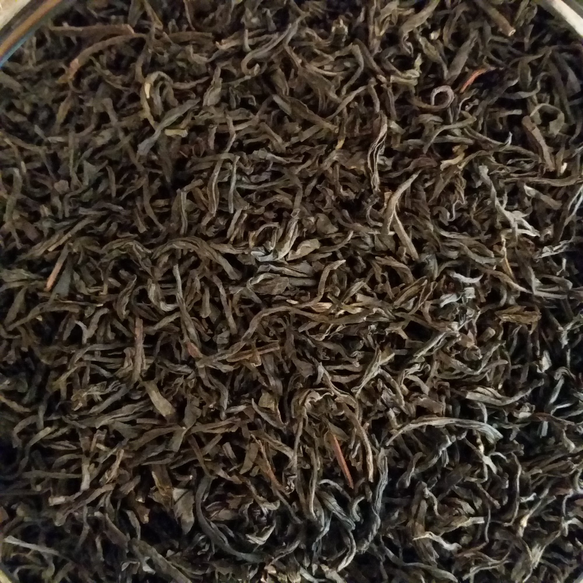 Assam - Orange Pekoe, Black Estate Tea CERTIFIED ORGANIC