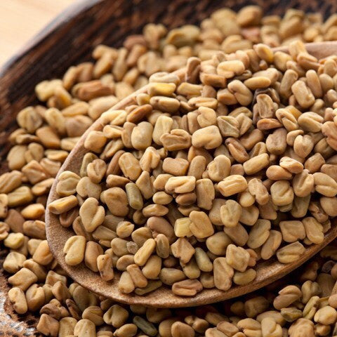Fenugreek-Whole - The Tea & Spice Shoppe