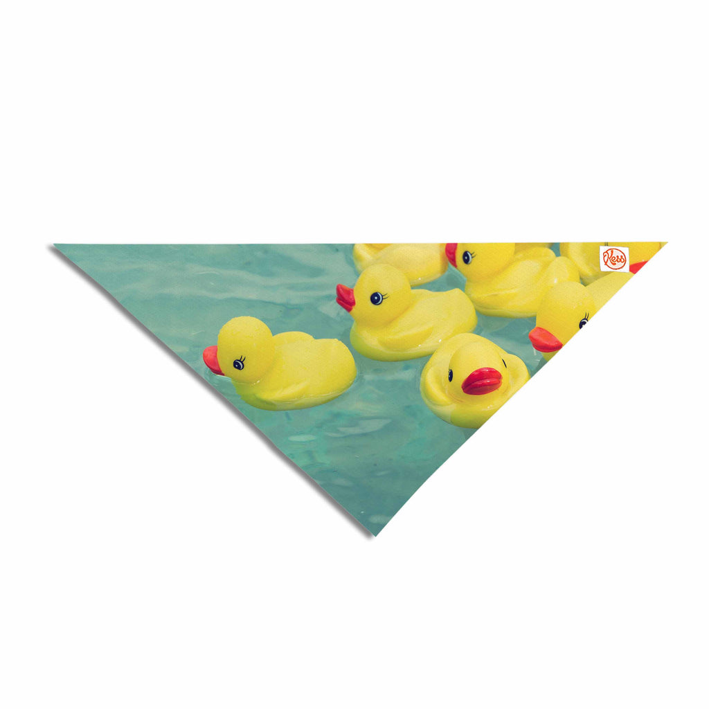 "Ann Barnes ""Escaping Normal"" Blue Yellow Pet Bandana - Outlet Item"