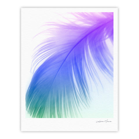 "Alison Coxon ""Feather Colour"" Fine Art Gallery Print - KESS InHouse"