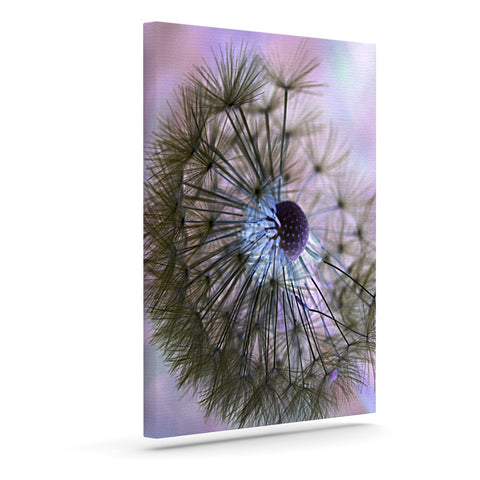 "Alison Coxon ""Dandelion Clock"" Outdoor Canvas Wall Art - KESS InHouse  - 1"