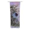 "Alison Coxon ""Dandelion Clock"" Decorative Sheer Curtain - KESS InHouse"