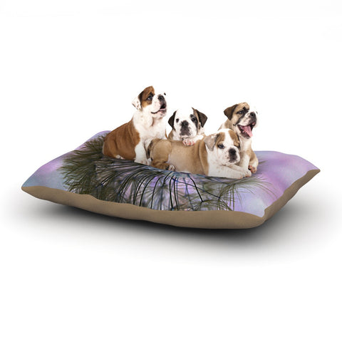"Alison Coxon ""Dandelion Clock"" Dog Bed - KESS InHouse  - 1"