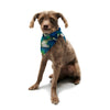 "Alison Coxon ""Leaves"" Pet Bandana - KESS InHouse  - 1"