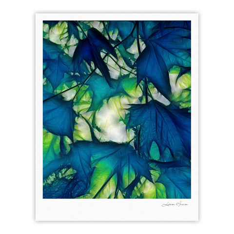"Alison Coxon ""Leaves"" Fine Art Gallery Print - KESS InHouse"