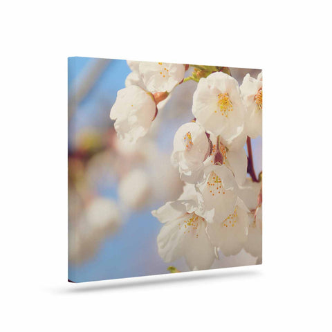 "AFE Images ""Cherry Blossoms"" Multicolor Blue Photography Art Canvas"