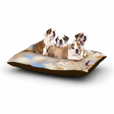 "AFE Images ""Cherry Blossoms"" Multicolor Blue Photography Dog Bed"