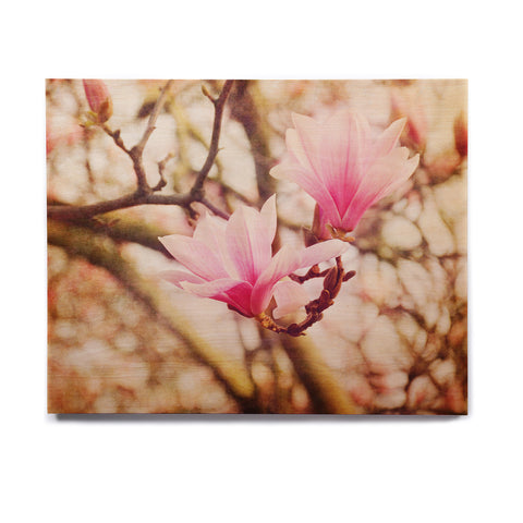 "AFE Images ""Magnolias"" Pink Brown Photography Birchwood Wall Art"