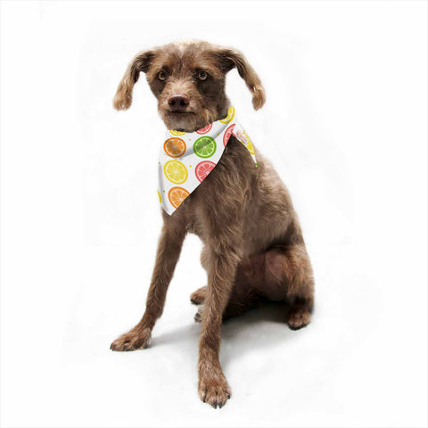 "Afe Images ""Citrus Pattern"" Multicolor Pink Illustration Pet Bandana"
