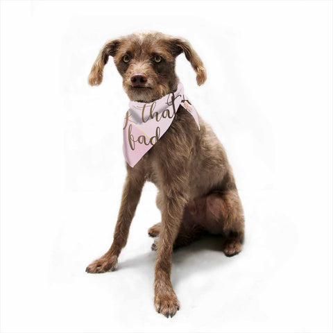 "afe images ""AFE Kindness"" Pink Gold Typography Modern Digital Illustration Pet Bandana"