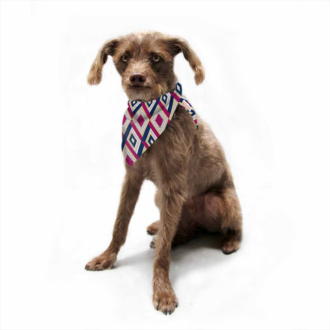 "afe images ""AFE Diamond Pattern"" Multicolor Diamond Pattern Digital Illustration Pet Bandana"