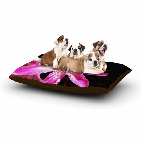 "AlyZen Moonshadow ""Pink On Dark"" Pink Black Digital Dog Bed"