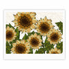 "Art Love Passion ""Sunflower Field"" Beige Yellow Fine Art Gallery Print - KESS InHouse"
