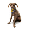 "Anneline Sophia ""Summer Rose Yellow"" Purple Lavender Pet Bandana - KESS InHouse  - 1"