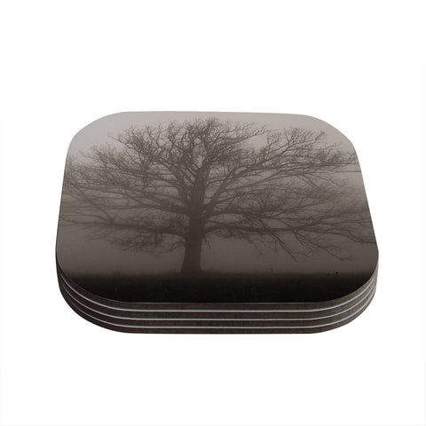 "Angie Turner ""Lonely Tree"" Dark Fog Coasters (Set of 4) - Outlet Item"