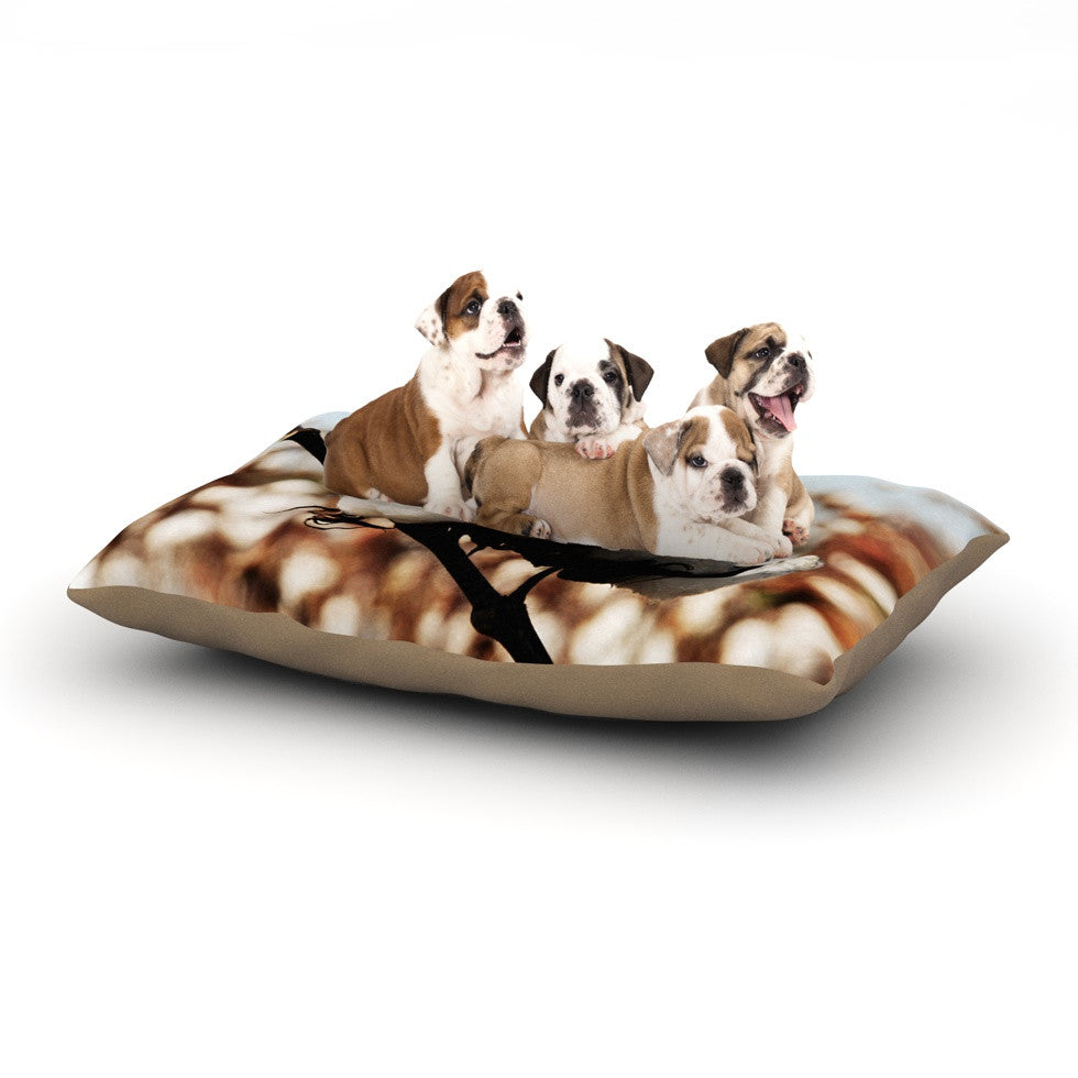 "Beth Engel ""Southern Snow"" Cotton Dog Bed - KESS InHouse  - 1"