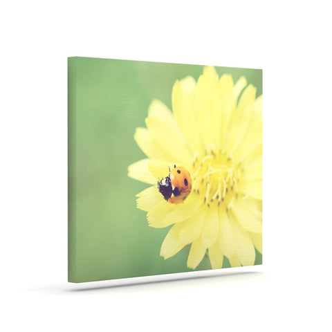 "Beth Engel ""Little Lady"" Ladybug Canvas Art - KESS InHouse  - 1"