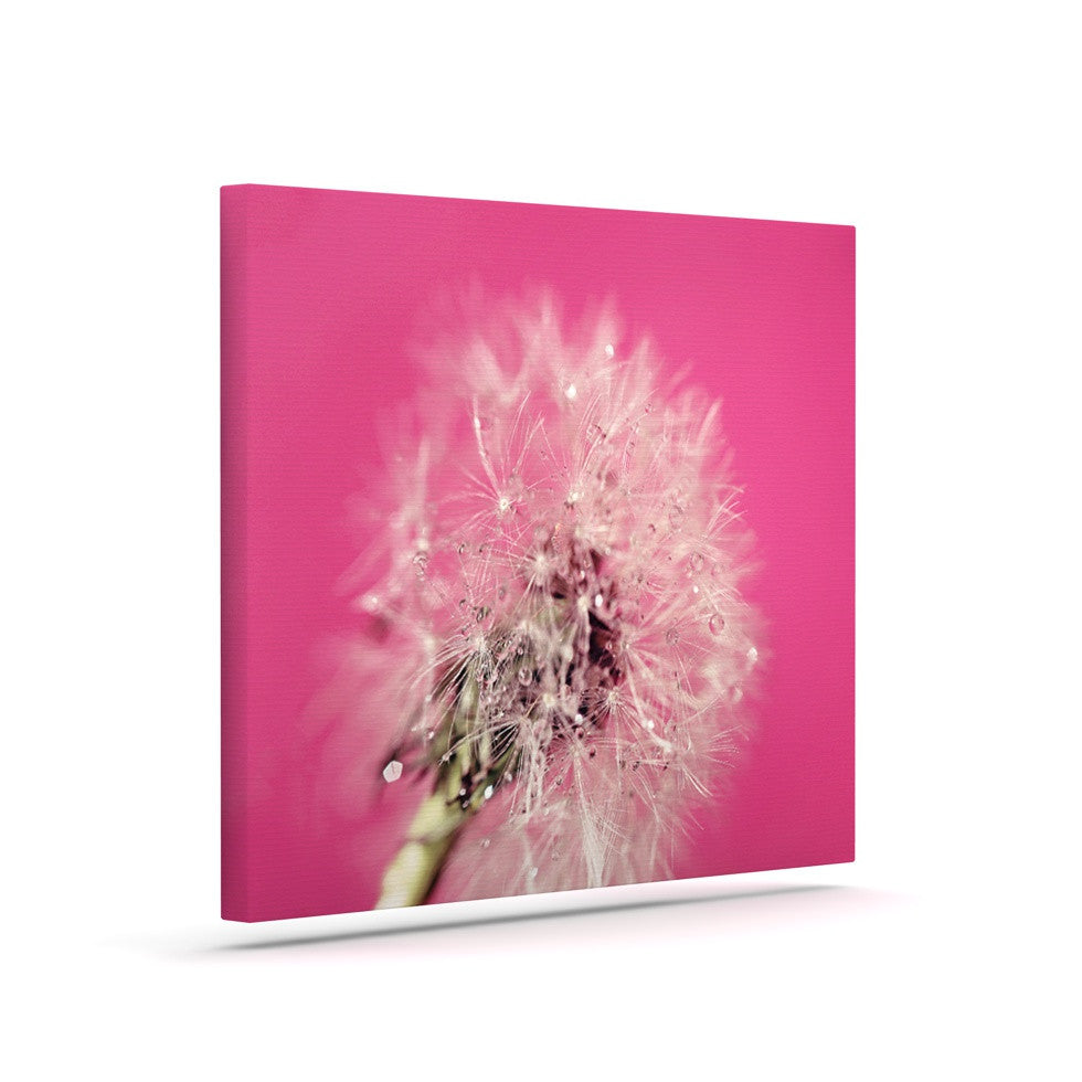 "Beth Engel ""Pink Twilight"" Magenta Dandelion Canvas Art - KESS InHouse  - 1"