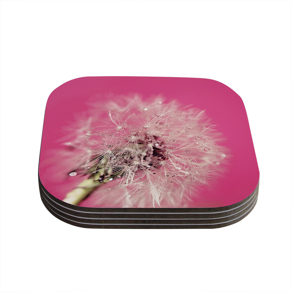 "Beth Engel ""Pink Twilight"" Magenta Dandelion Coasters (Set of 4)"
