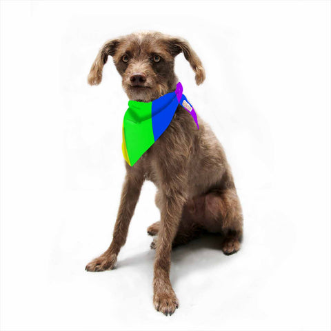"Bruce Stanfield ""Rainbow"" Stripes Digital Pet Bandana - Outlet Item"