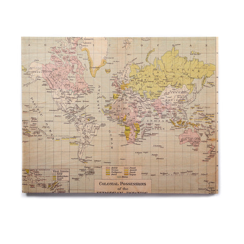 "Catherine Holcombe ""Travel"" World Map Birchwood Wall Art - KESS InHouse  - 1"