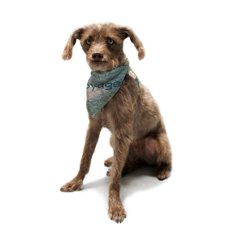 "Catherine Holcombe ""Voyage"" Teal Map Pet Bandana - KESS InHouse  - 1"