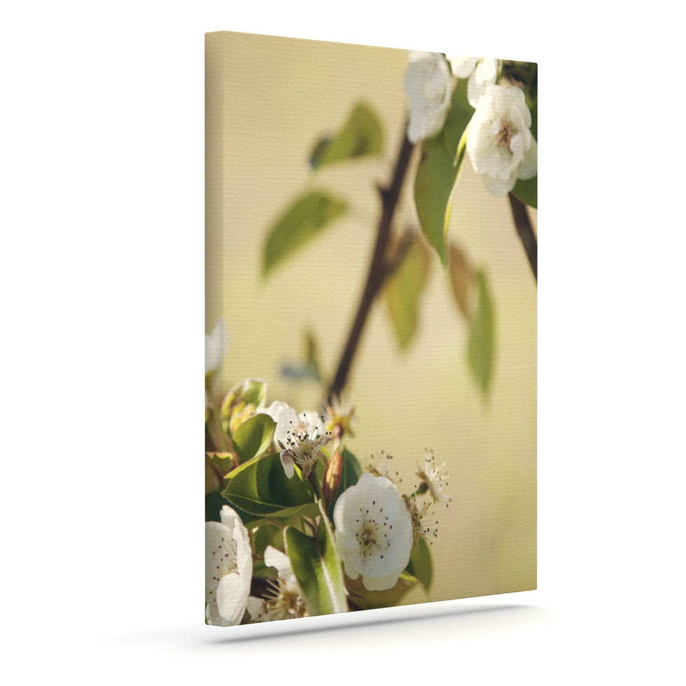 "Catherine McDonald ""Pear Blossom"" Outdoor Canvas Wall Art - KESS InHouse  - 1"