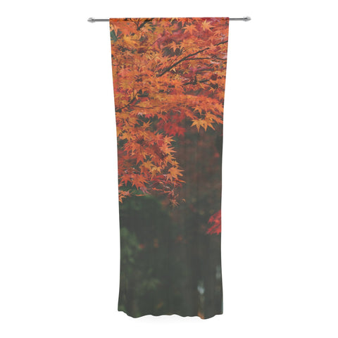 "Catherine McDonald ""Autumn Sonata"" Orange Green Decorative Sheer Curtain - KESS InHouse  - 1"