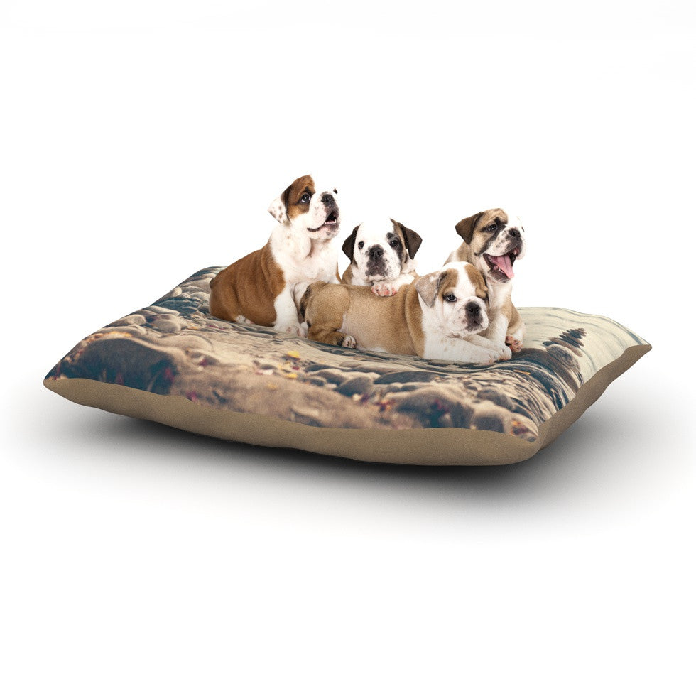 "Catherine McDonald ""River Cairns"" Brown Blue Dog Bed - KESS InHouse  - 1"