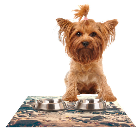 "Catherine McDonald ""River Cairns"" Brown Blue Dog Place Mat - Outlet Item"