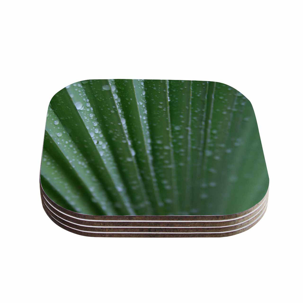 "Cyndi Steen ""Green Palm Frond"" Green Nature Coasters (Set of 4)"