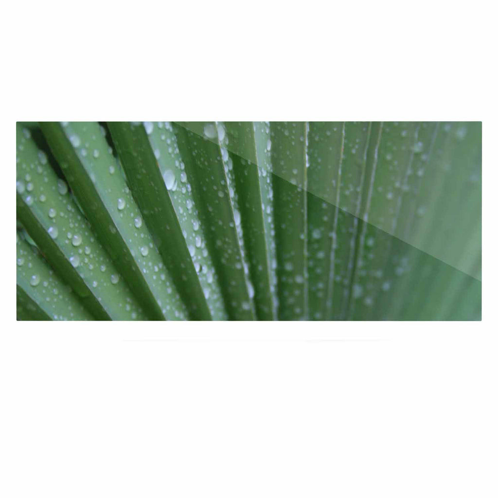 "Cyndi Steen ""Green Palm Frond"" Green Nature Luxe Rectangle Panel - KESS InHouse  - 1"