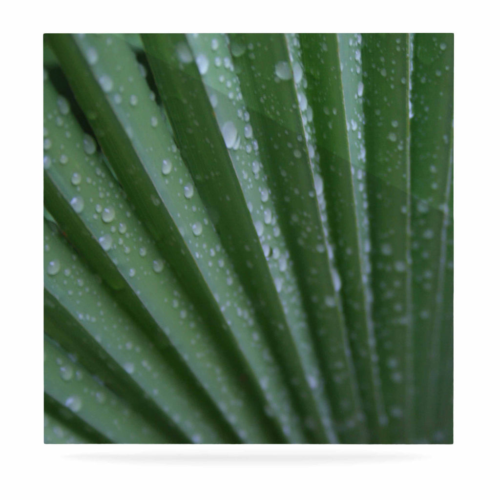 "Cyndi Steen ""Green Palm Frond"" Green Nature Luxe Square Panel - KESS InHouse  - 1"