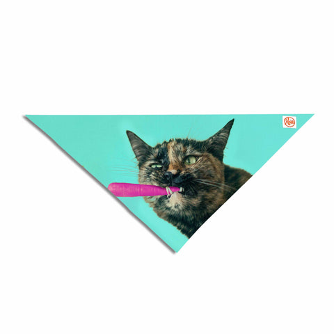 "Cvetelina Todorova ""The Pink Carrot"" Blue Pink Photography Pet Bandana"