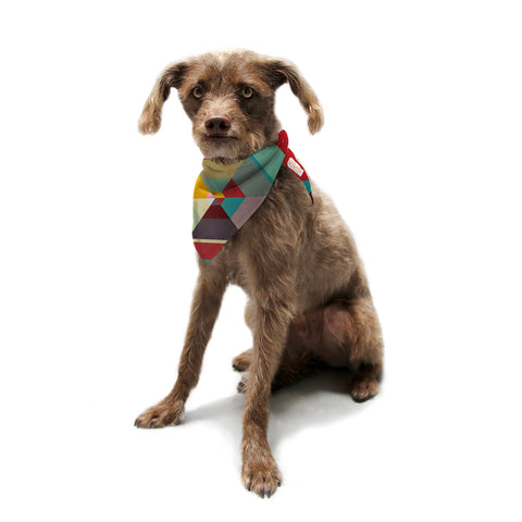 "Danny Ivan ""Color Mess"" Pet Bandana - KESS InHouse  - 1"