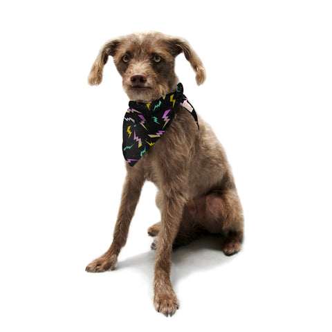"Danny Ivan ""A Touch Of Whimsy"" Black Fantasy Pet Bandana - Outlet Item"