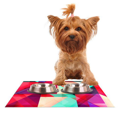 "Danny Ivan ""Still New"" Dog Place Mat - Outlet Item"