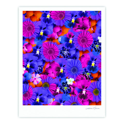 "Akwaflorell ""Find the Tiger"" Purple Pink Fine Art Gallery Print - KESS InHouse"