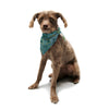"Akwaflorell ""Blues in Blue"" Pet Bandana - KESS InHouse  - 1"