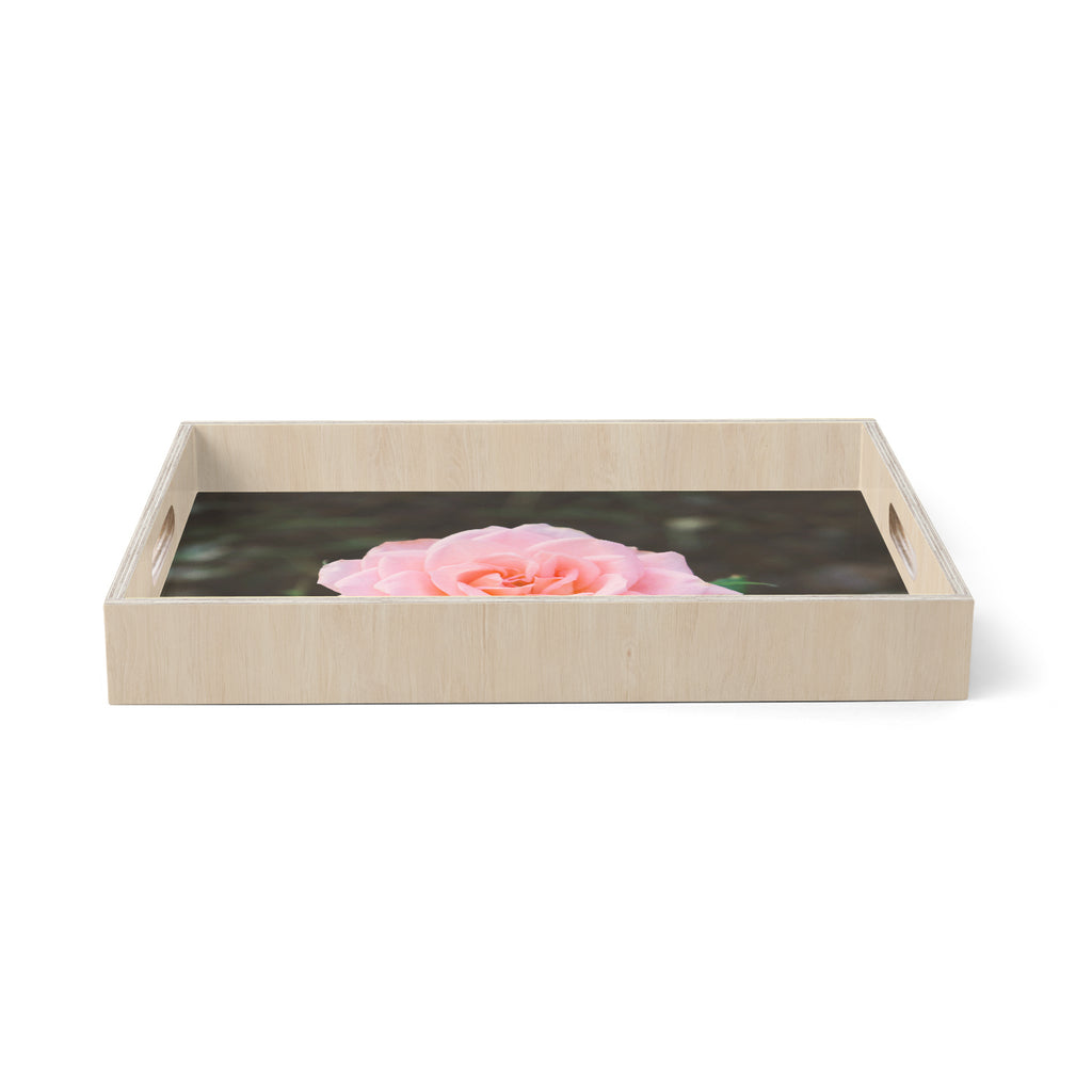 "Heidi Jennings ""Pink Rose"" Pink Floral Nature Mixed Media Photography Birchwood Tray"