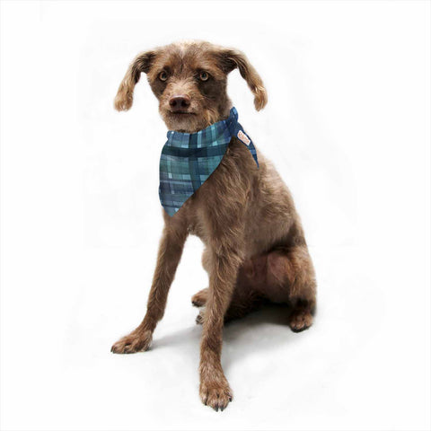 "Ebi Emporium ""PLAID FOR YOU, TEAL BLUE"" Blue Teal Stripes Pattern Mixed Media Painting Pet Bandana"