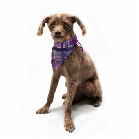 "Ebi Emporium ""PLAID FOR YOU, PURPLE MULTI"" Purple Lavender Stripes Pattern Mixed Media Painting Pet Bandana"