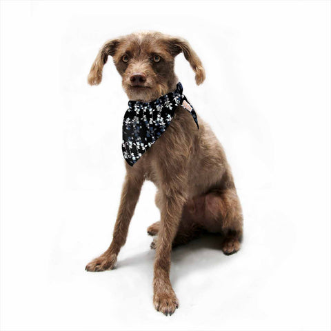 "Ebi Emporium ""DANCING ROSES ON BLACK"" Black,White,Pattern,Floral,Mixed Media,Watercolor Pet Bandana"