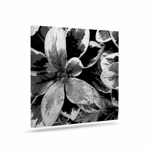 "Julia Grifol ""Leaves In Gray"" Floral Black Canvas Art - KESS InHouse  - 1"