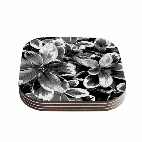 "Julia Grifol ""Leaves In Gray"" Floral Black Coasters (Set of 4)"