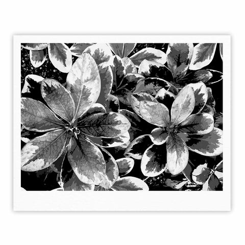 "Julia Grifol ""Leaves In Gray"" Floral Black Fine Art Gallery Print - KESS InHouse"