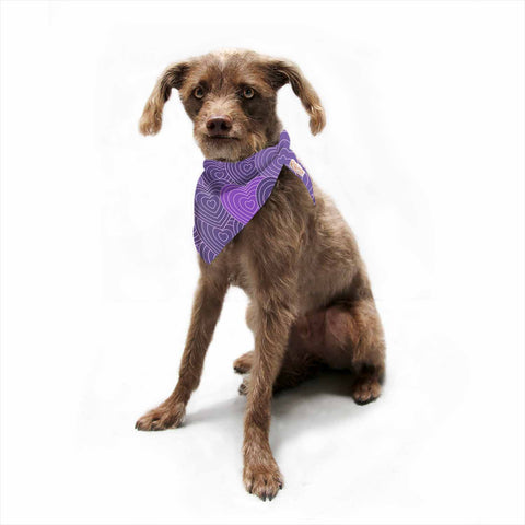 "Julia Grifol ""Violet Crazy Love"" Purple Pattern Geometric Vector Digital Pet Bandana"